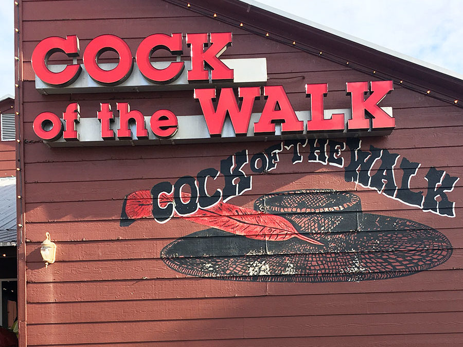 Cock of the Walk: Quite Possibly America's Best Catfish