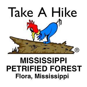 MSPetrifiedForest