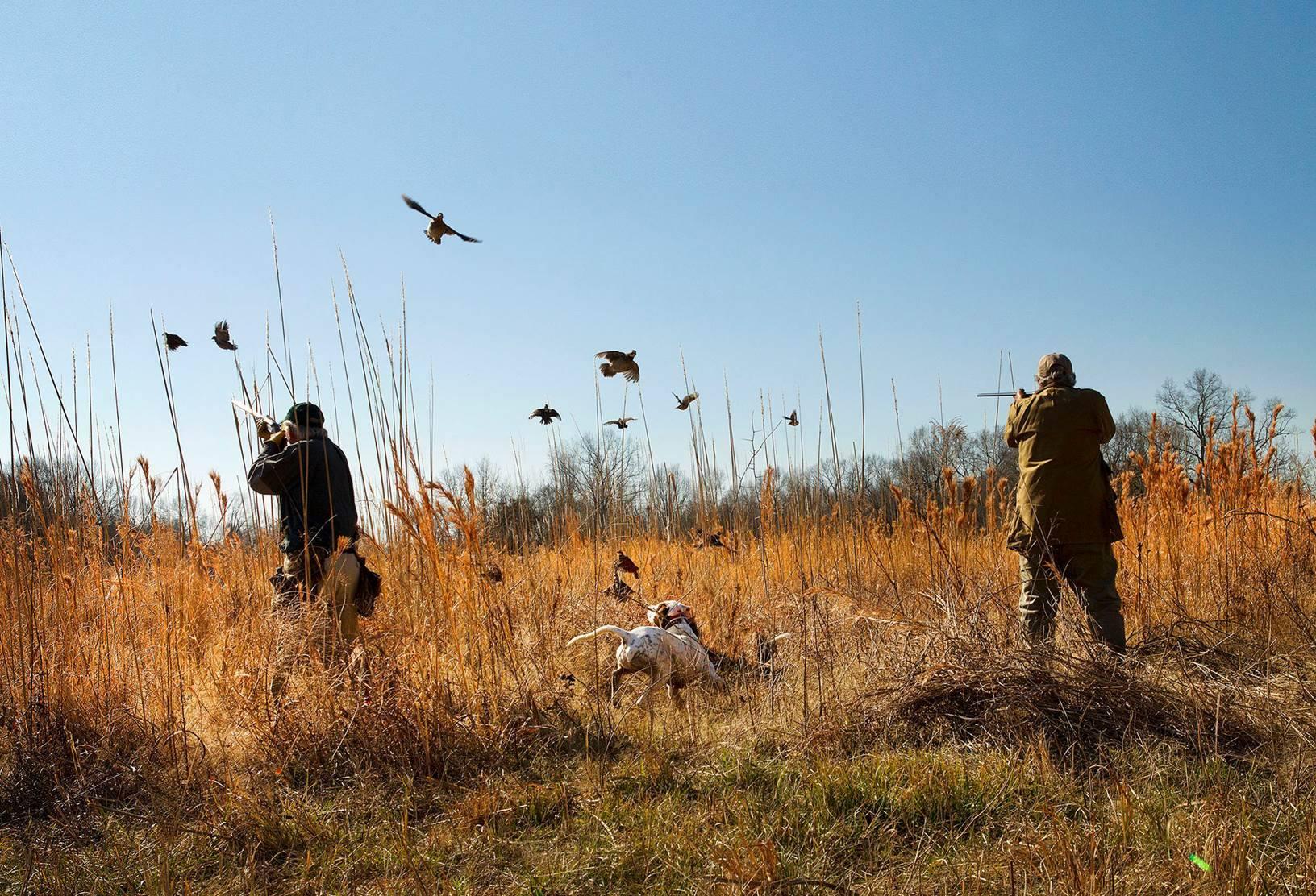 prairiewildlife-hunting